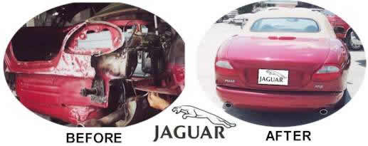 CLICK HERE TO VIEW JAGUAR SAMPLE PHOTOS